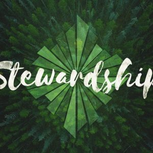 stewardship 300x300 - Investing in the Agile Community