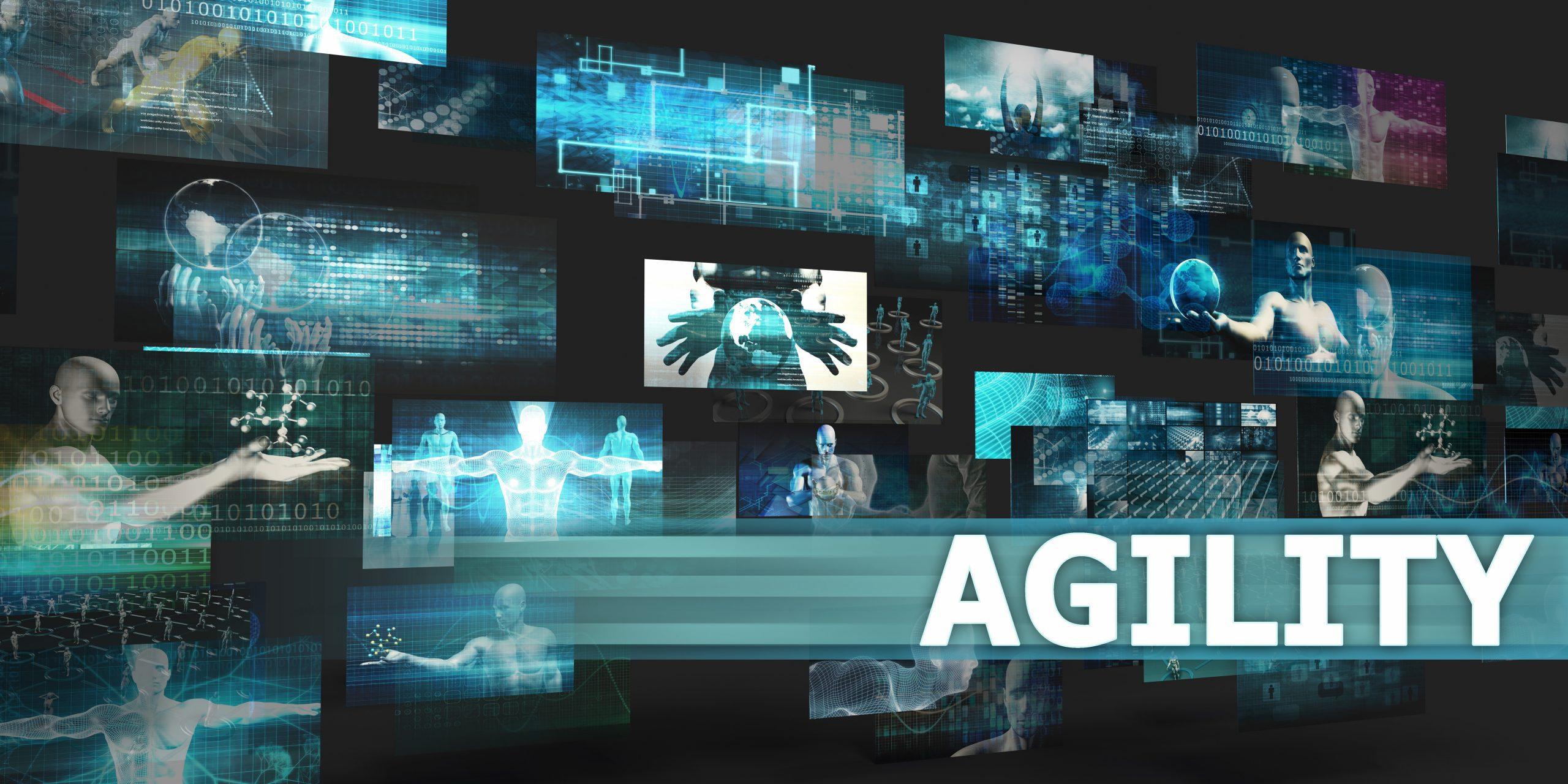 Enterprise Agility - ICAgile ICP-ENT